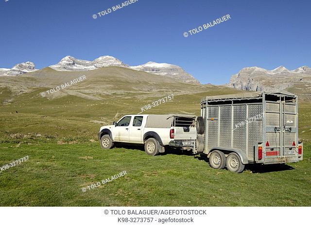 pastor, Plano Tripals, parque nacional de Ordesa y Monte Perdido, comarca del Sobrarbe, Huesca, Aragón, cordillera de los Pirineos, Spain
