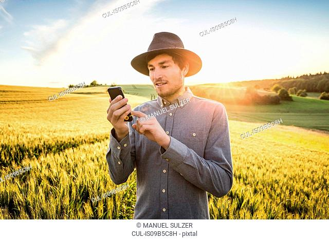 Mid adult man, standing in field, using smartphone, Neulingen, Baden-W³rttemberg, Germany