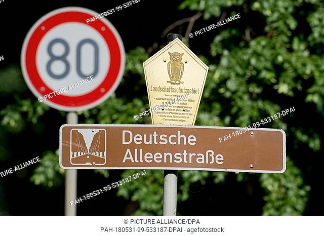 "30 May 2018, Germany, Garz: A sign reads """"Deutsche Alleenstrasse"""" (German Avenue Road) on the avenue between Garz and Putbus"