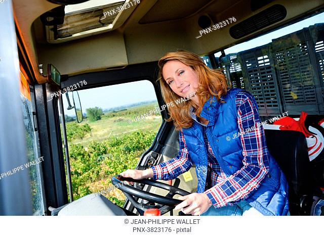 beautiful and cheerful young woman farmer driving tractor in the fields during harvest season in countryside- Cepage Grenache, Chateauneuf du Pape