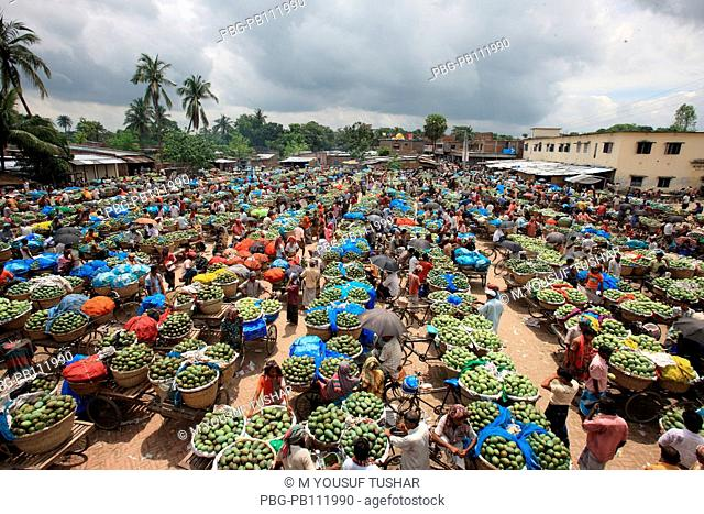 A whole sale mango market at Rajshahi Some poor people of Rajshahi district takes micro credit loan from Agriculture Bank under micro finance for invest to the...