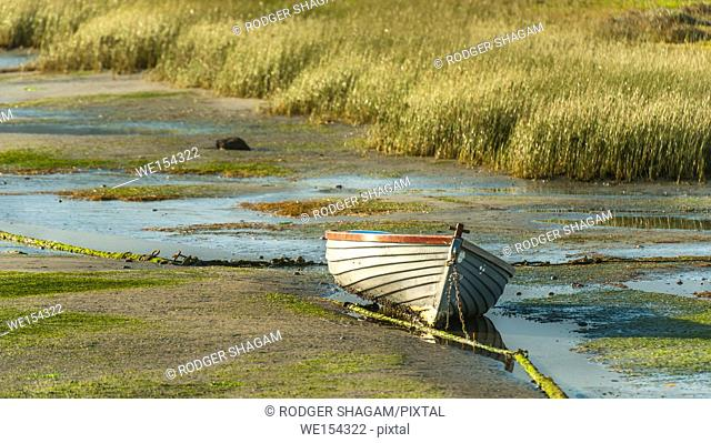 An old dinghy is left high and dry on a mudbank at low tide. Knysna Lagoon, Western Cape Province, South Africa
