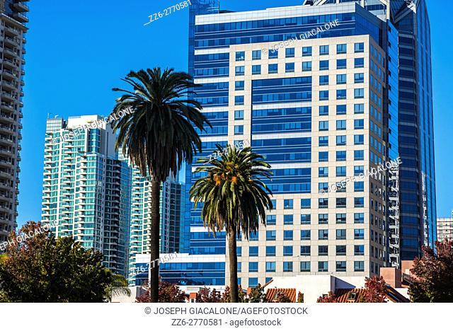 Downtown San Diego buildings. View from Pantoja Park. San Diego, California, USA