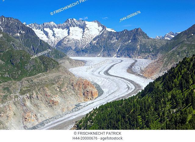Wannenhörner and Aletsch glacier, Valais, Switzerland
