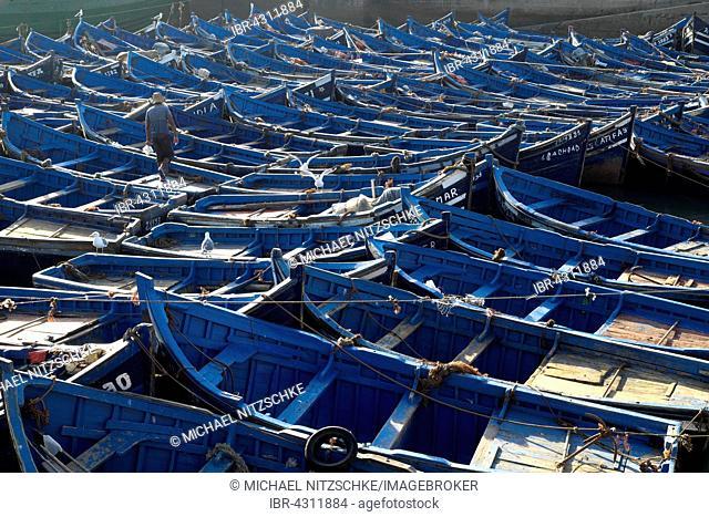 Blue boats in harbour, Essaouira, Marrakech-Tensift-Al Haouz, Morocco