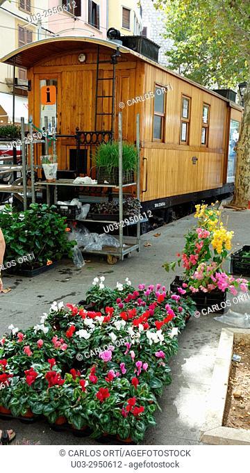 Flower street market in the majorcan town of Sóller, tha capital of the Tramuntana mountains, Majorca island, Balearic islands, Spain, Europe