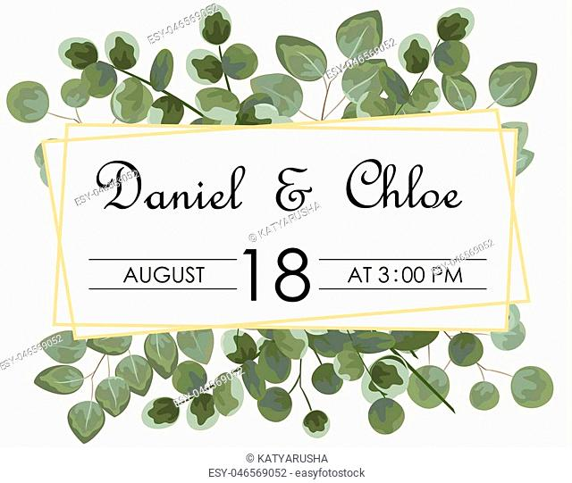 background for text from eucalyptus. gray and green eucalyptus.invitation, postcard with eucalyptus. rustic style, Botanical style. burp with greens