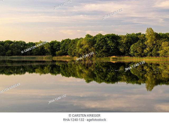Lough Barry, Inishmore, Upper Lough Erne, County Fermanagh, Northern Ireland, United Kingdom, Europe