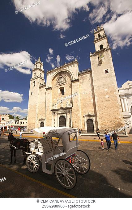View to the Cathedral of San Ildefonso with a horse carriage in the foreground, Merida, Yucatan Province, Mexico, Central America
