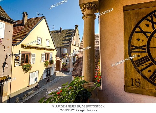 street in the village Mittelbergheim with flowered houses and exceptional architecture, Alsace, France
