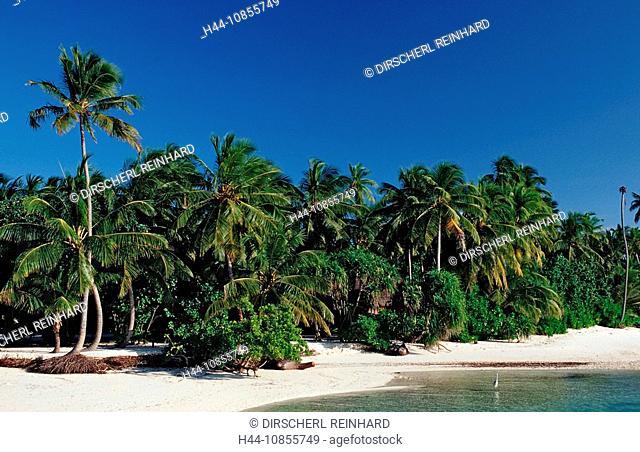10855749, Maldives, Indian Ocean, Medhufushi, Meem