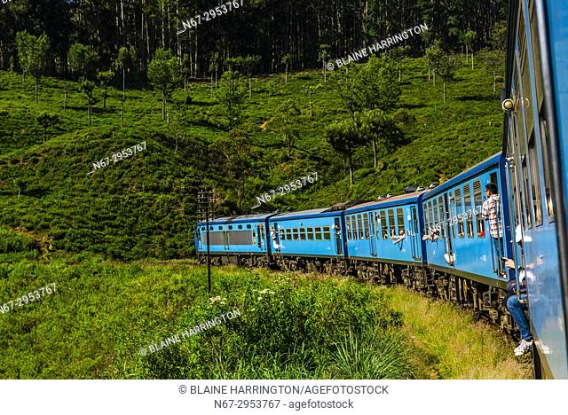 Train trip through the scenic mountains featuring many tea plantations between Nuwara Eliya (Nanu Oya) to Ella, Sri Lanka