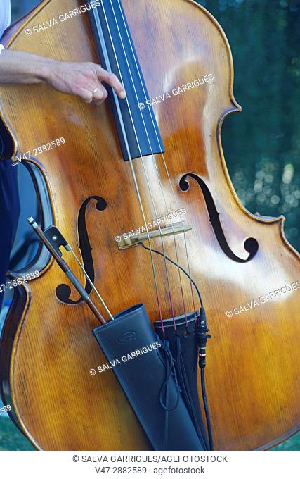 Detail of a hand playing the strings of a cello