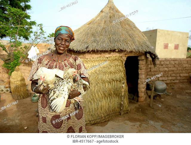 Woman, farmer holding two live chickens in hands, Toeghin village, Oubritenga province, Plateau Central region, Burkina Faso