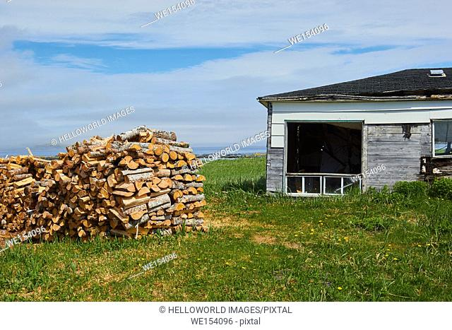Stack of logs next to abandoned house by the Atlantic ocean, Newfoundland, Canada