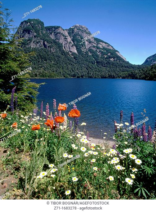 Argentina, Rio Negro Province, Lake Nahuel Huapi, Puerto Blest
