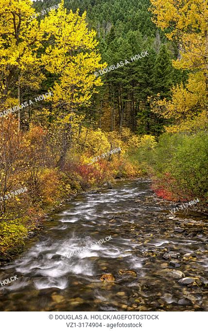 Montana's Hyalite River in Fall