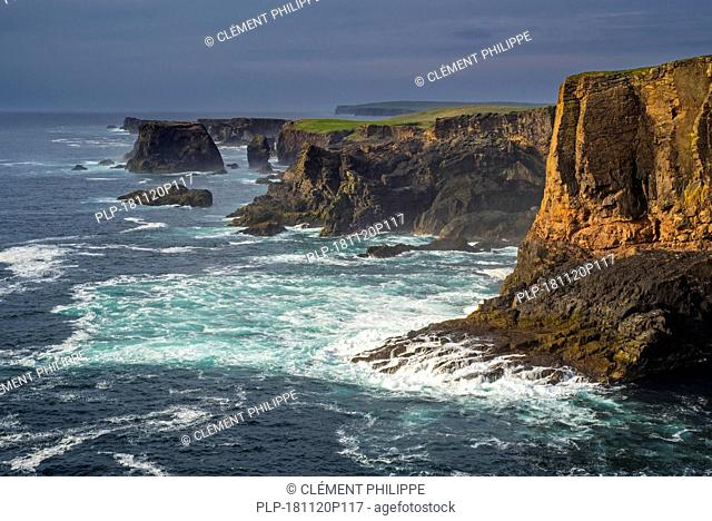 Sea cliffs and stacks at Eshaness / Esha Ness at sunset during approaching storm in Northmavine, Mainland, Shetland Islands, Scotland, UK