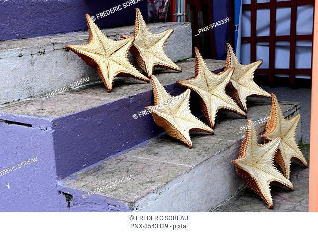 Starfish for sale in Livingston, Rio Dulce, Guatemala, Central America