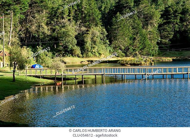 Piedras Blancas Ecological Park, Santa Elena, Medellin, Antioquia, Colombia
