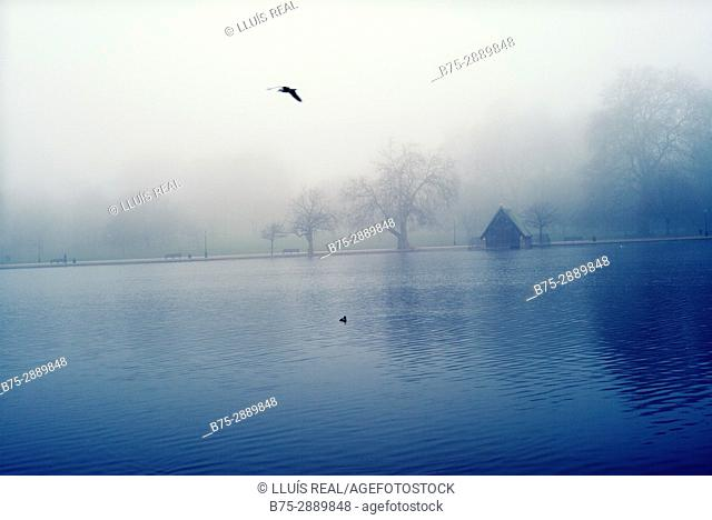 View of The Serpentine Lake in a foggy morning. Hyde Park, London, England