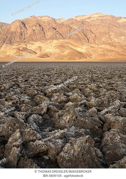Eroded rock salt pinnacles on the Devil's Golf Course, a salt pan in the Death Valley, Badwater Basin, Death Valley National Park, California, USA