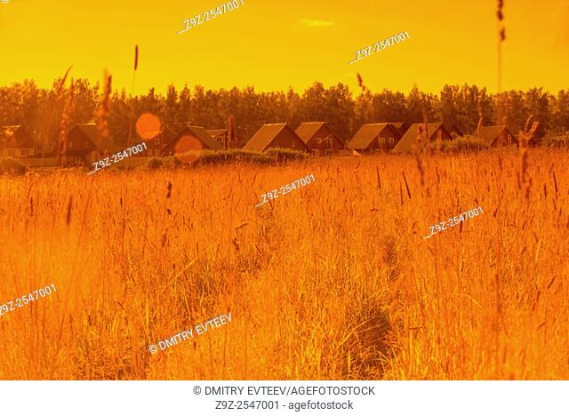 Agricultural landscape with cottages in warm tone. Taken with using of color filters