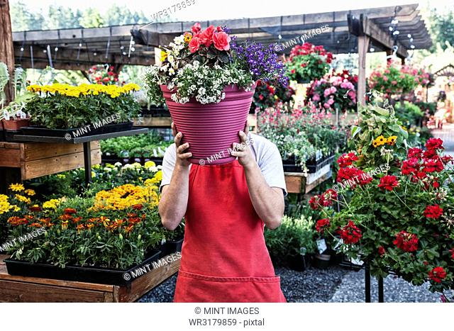 Garden centre nursery employee with potted plants