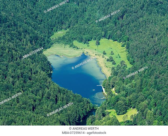 Lake Obersee near Füssen, natural swimming bath, aerial view, near Füssen, Bavaria, Germany