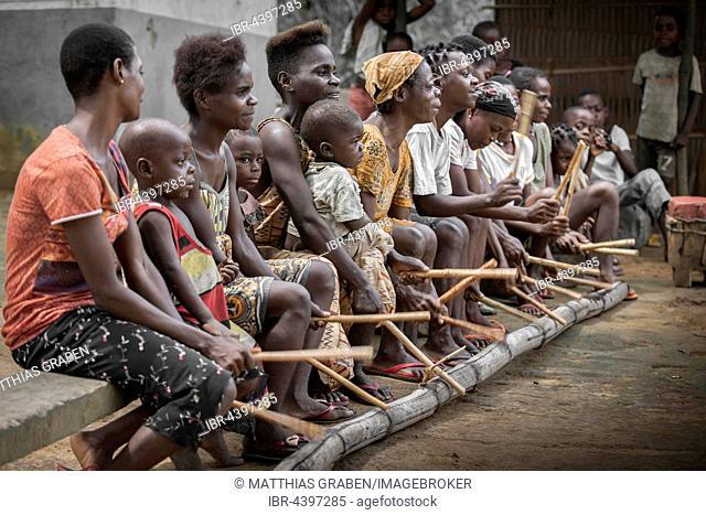 Pygmies, people of Baaka, or Baka, or Ba'aka, Music Performance and Dance, Grand Batanga, Southern Region, Cameroon