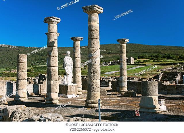 Roman ruins of Baelo Claudia -2th century BC- Basilica, Tarifa, Cadiz province, Region of Andalusia, Spain, Europe