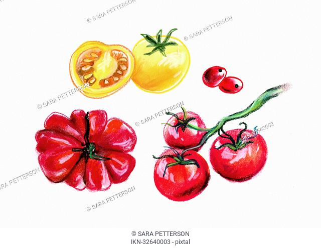 Variation of tomatoes