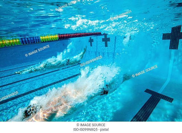Olympic Hopefuls in Training