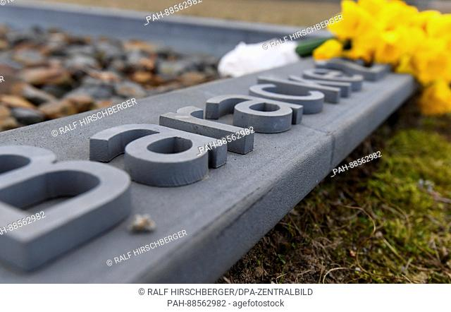 Daffodils can be seen the grounds of the former concentration camp in Oranienburg, Germany, 28 February 2017. On the 28 February 2017 the yearly press...
