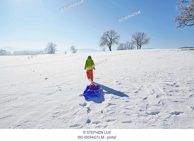Young boy walking in snow, pulling sled behind him, rear view