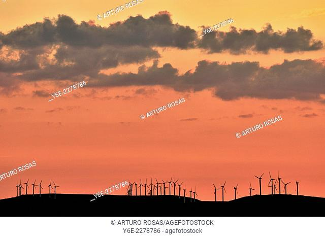 Wind farm. Province of Avila. Spain