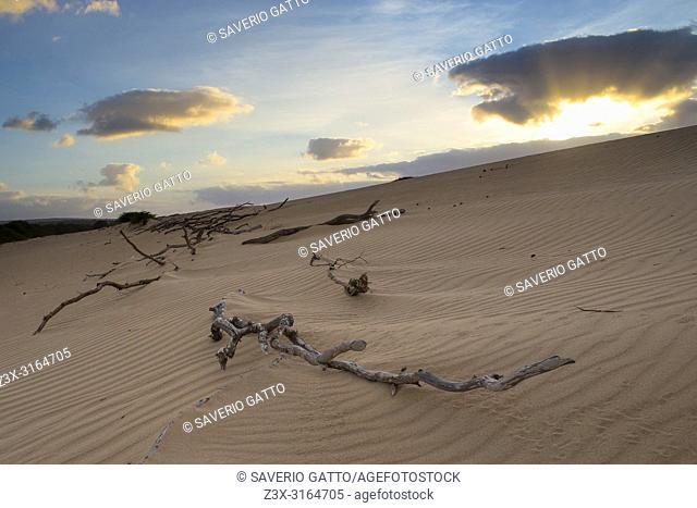 Sand Dunes, Boavista, Cape Verde, Sunrise, dawn,