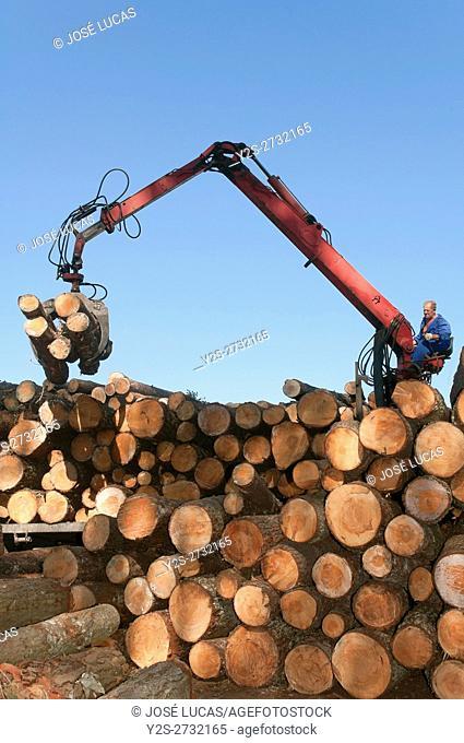 Wood industry, Morpeguite, Muxia, La Coruña province, Region of Galicia, Spain, Europe