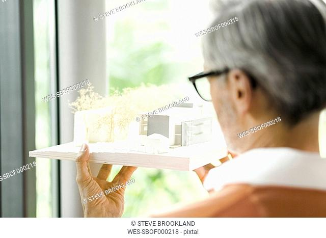 Back view of man looking at architectural model