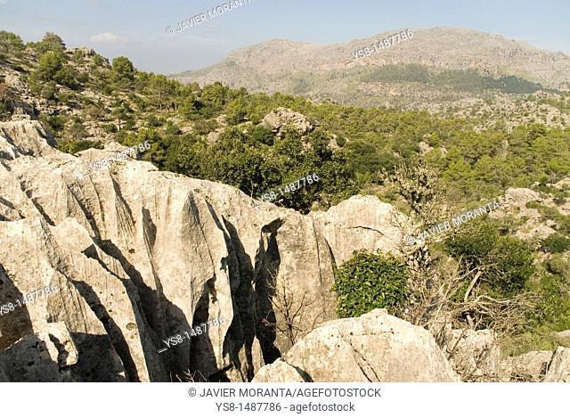 Spain, Balearic Islands, Mallorca, Training karst limestone in the Sierra de Tramuntana
