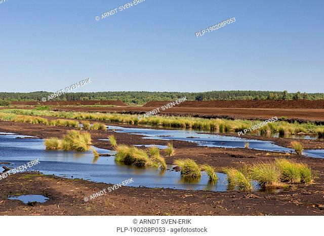 Peat extraction at Totes Moor / Tote Moor, raised bog near Neustadt am Rübenberge, district of Hannover, Lower Saxony / Niedersachsen, Germany