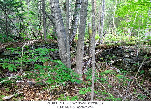 The Atwood Place home site cellar hole along Sandwich Notch Road in Sandwich, New Hampshire USA. During the early nineteenth century