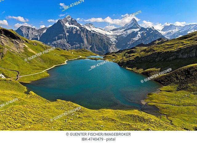 Alpine landscape with lake Bachalpsee and the summit Wetterhorn, Schreckhorn and Finsteraarhorn, Grindelwald, Bernese Oberland, Switzerland