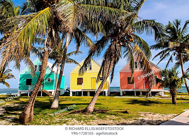 Pastel colored cottages along the water with coconut palms on Green Turtle Cay, Bahamas