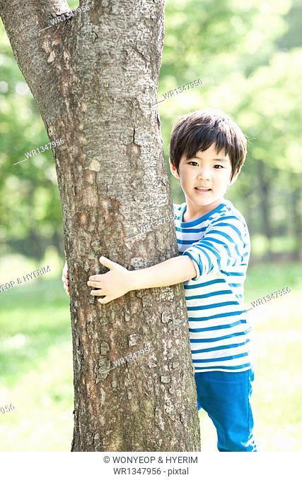 a boy hiding behind a tree
