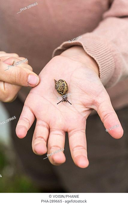 6 year old girl holding snail