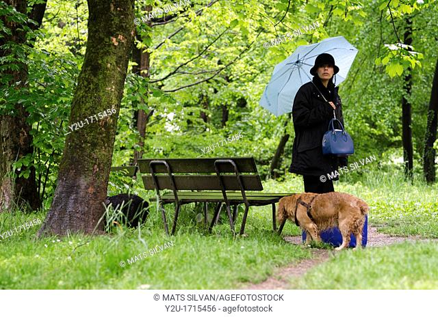 Woman with a blue umbrella standing up close to a wet bench in the green forest with grass and two cocker spaniel dogs and her suitcase