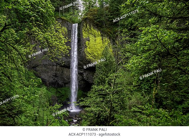 Latourell Falls is a waterfall along the Columbia River Gorge in Oregon, within Guy W. Talbot State Park. The Historic Columbia River Highway passes nearby
