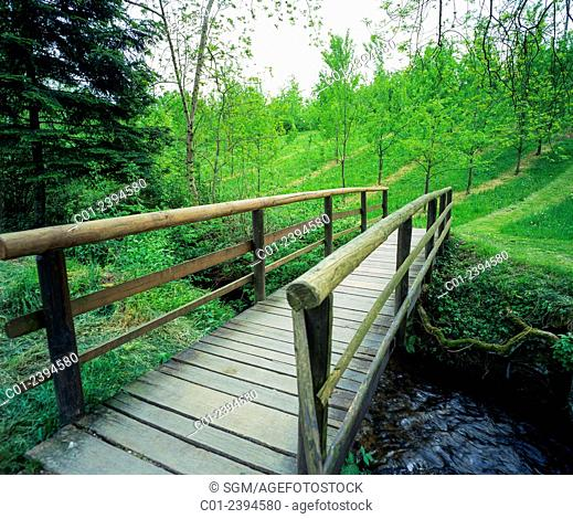 Small wooden footbridge and trees plantation Alsace France