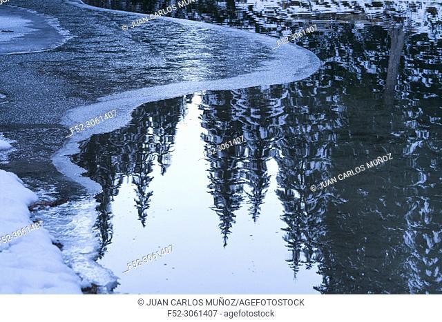 Lago Braies, Dolomites, Unesco World Heritage Site, Italy, Europe